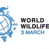World Wildlife Day, Kids and Nature: Connect to Protect