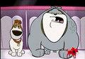 mtv dogs.jpg