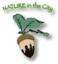 nature-in-the-city.png