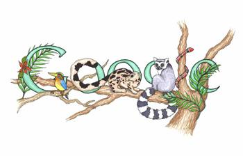 google-rainforest