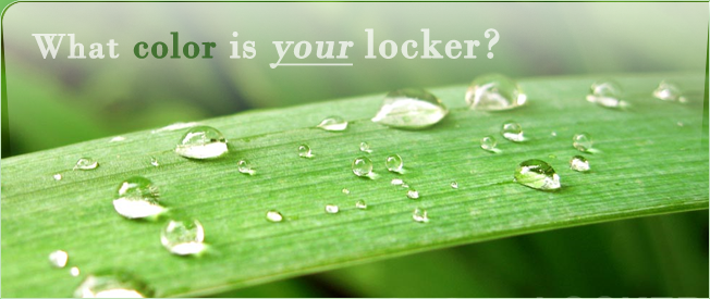 greenyourlocker