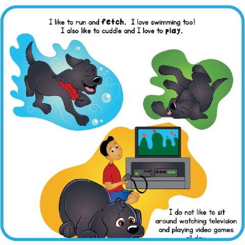 dog bk swim